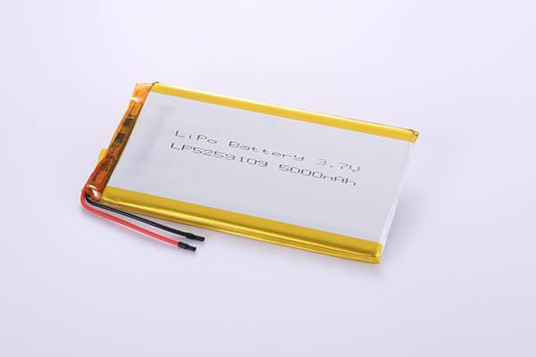 Hot Selling Standard LiPo Batteries LP5259102 3.7V 5000mAh